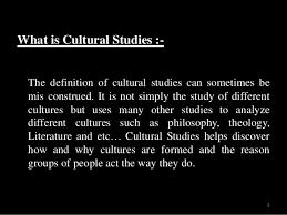 paper 8 cultural studies