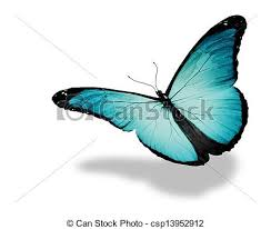 light blue butterfly flying isolated on white background clipart
