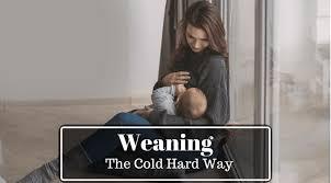 Stop Comfort Nursing 5 Tips On Stopping Breastfeeding Cold Turkey Wellbeingkid