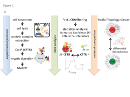 characterization of membrane protein interactomes by co
