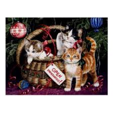 cat christmas cards invitations greeting u0026 photo cards zazzle