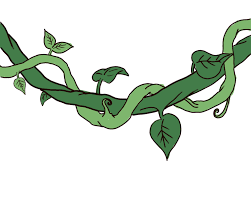 draw a jungle vine drawings leaves and flowers