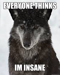 Meme Wolf - everyone thinks im insane sad wolf quickmeme