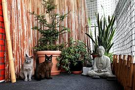 3 tips for creating the perfect catio cat patio iheartcats com