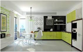 eco kitchen cabinets kitchen decorating kitchen remodel pictures kitchen remodel