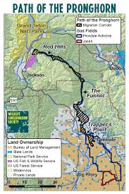 Grand Teton Map Pronghorn Migration On The Path Of The Pronghorn