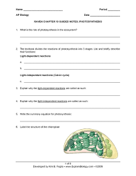 ap bio worksheets free worksheets library download and print