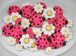ladybug cookies bug cookies craftbnb