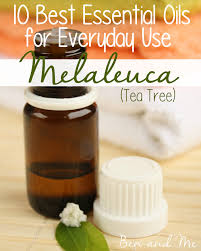 everyday uses for tea tree essential and acne treatment serum
