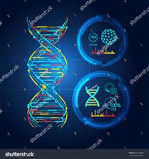 blueprint dna dna symbol technological looks stock vector