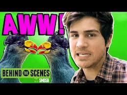 Challenge Smosh Lipstick Birds Challenge Bts Http Www