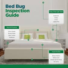 lights out bed bug killer bed bug killer spray usda biobased eco defense