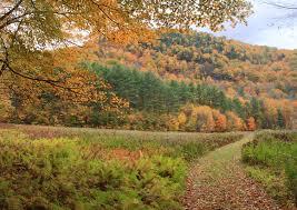 John burk western massachusetts and berkshires mohawk trail