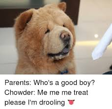 Drooling Meme - parents who s a good boy chowder me me me treat please i m