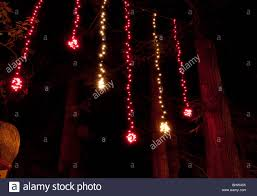 Hanging Tree Lights by Outdoor Hanging Tree Lights Clipart Verticle Clipartfest