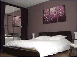 peinture chambre adultes modèle de chambre adulte inspirational exemple peinture chambre