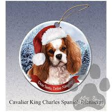 1729 best cavalier king charles spaniels and king charles spaniels