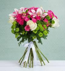 teal roses 48 pink rambler roses cheerful hug