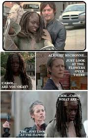 Look At The Flowers Meme - daryl and carol just look at the flowers michonne the walking