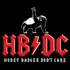 Honey Badger Memes - rock out and don t care just like honey badger here cool stuff