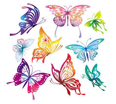 butterfly vector free vector site free vector