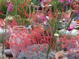 plant nurseries digwithdorris com