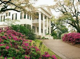 southern plantation style homes 13 best southern homes images on southern charm