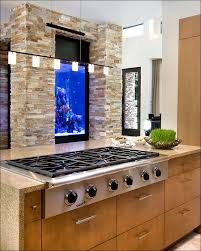 Painting Inside Kitchen Cabinets by Kitchen Shocking Marine Kitchen Cabinets Picture Concept Kitchens