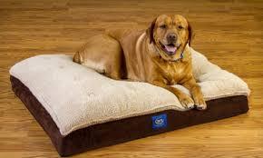 pillow top dog bed serta orthopedic dog bed groupon goods