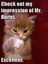 Mr Burns Excellent Meme - check out my impression of mr burns excellent cat viral