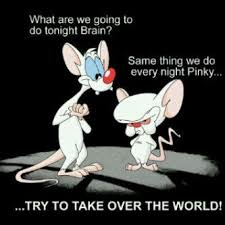 Pinky And The Brain Meme - luxury pinky and the brain meme pinky and the brain quotes