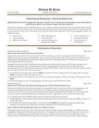 account executive resume business account executive resumes paso evolist co