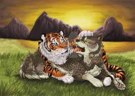 a tiger hugs a wolf by meteor panda on deviantart