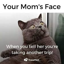 Trip Meme - travel memes sweet tiffys inspirations