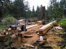 tips for using a portable sawmill woodworking blog videos