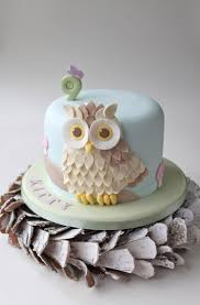 134 best i have a thing for owls images on pinterest cute owl