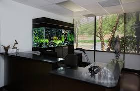 Beautiful Home Fish Tanks by Small Modern Fish Tank