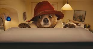 paddington bear film colin firth u0027consciously uncouples u0027