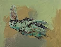 sea turtle art fine art america