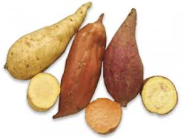 Chinese Root Vegetables - vegetables a z vegetables