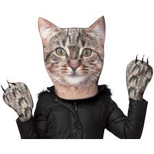 Halloween Costumes Cats 25 Animal Costumes Adults Ideas Disney