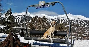 Backyard Ski Lift Fire On Demand Steelfirepits Twitter