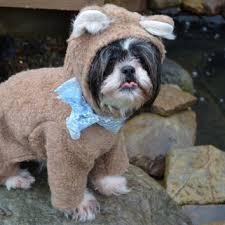 Halloween Costumes Teddy Bear Adorable Soft Cream Colored Teddy Bear Sewdoggonecreative