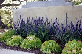 Southern Garden Ideas Wonderful Southern Landscaping Ideas Southern Landscaping Ideas
