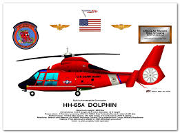hh 65 dolphin artwork