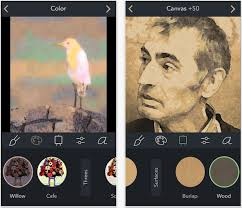 brushstroke turns your pictures into paintings you can mount on