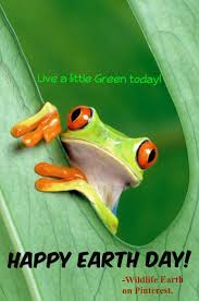 106 best frog holiday pics etc images on pinterest holiday pics