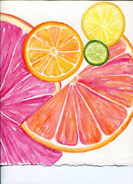 lime slice silhouette ruby red grapefruit lemon lime slices by sharonfosterart on etsy