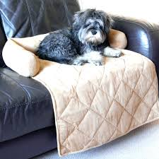 awesome dog couch bed suzannawinter com awesome dog beds uk