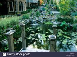 backyard pond and perennials in minnesota water garden mis summer